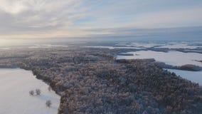Zima krajobraz z lasem, pole Styczeń 33c krajobrazu Rosji zima ural temperatury Zdjęcie Stock
