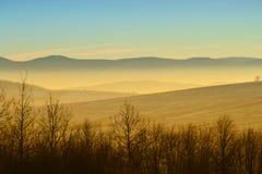 Zima krajobraz z mgłą Zdjęcie Stock