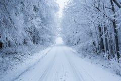 Zima krajobraz z mrozem i śniegiem zakrywał drzewa i naturę Karpackie góry blisko Bratislava, Sistani Obrazy Stock