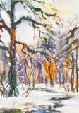 Zima krajobraz z nagimi drzewami fotografia stock