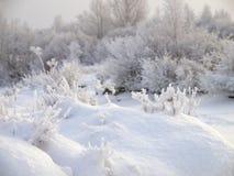 Zima krajobraz z śniegiem na wzgórkach i ziemi Obraz Stock