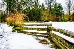 Zima krajobraz z rozszczepionym sztachetowym ogrodzeniem śniegi zakrywającymi traw polami w Campbell doliny parku i Zdjęcia Royalty Free