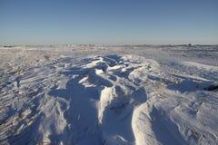 Zima krajobraz z Sastrugi, meandruje rzeźbić granie w śniegu Obraz Royalty Free