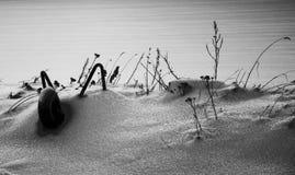 Zima krajobraz z snowbound wheelbarrow Fotografia Stock