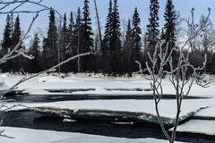 Zima krajobraz z unfrozen rzeką w rosjaninie Lapland, Kola półwysep Obraz Stock