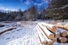 Zima krajobraz zakrywający śniegiem zdjęcia royalty free