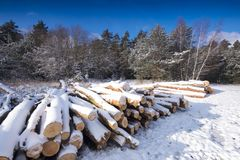 Zima krajobraz zakrywający śniegiem obraz stock