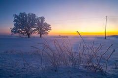 Zima krajobrazy, droga, śnieżyści drzewa Bardzo piękny czas nn Obraz Royalty Free