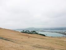 Zima krajobrazy w Jeju wyspie Fotografia Stock