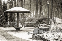 Zima krajobrazy w parku Fotografia Royalty Free