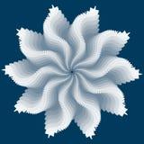 zima kwiat Fotografia Stock
