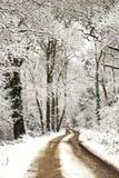 Zima ślada Zdjęcia Stock