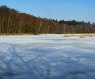 zima lake Obrazy Stock