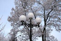 Zima lampion Obrazy Royalty Free