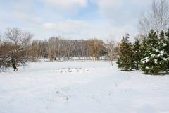 Zima landscape8 Zdjęcia Royalty Free