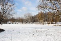 Zima landscape7 Obrazy Stock
