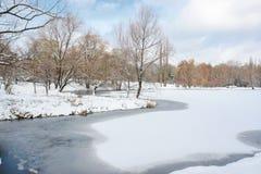 Zima landscape5 Fotografia Stock