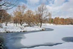 Zima landscape4 Obraz Royalty Free