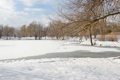 Zima landscape3 Zdjęcia Royalty Free