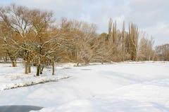 Zima landscape2 Fotografia Royalty Free