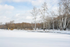 Zima landscape1 Obraz Stock