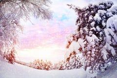 Zima las fotografia stock