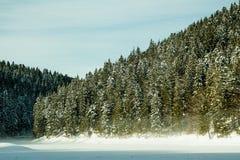 Zima las i zamarznięty jezioro Zdjęcie Royalty Free