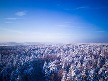 Zima las po opadu śniegu Niebieskie niebo widoku z lotu ptaka krajobraz obrazy stock