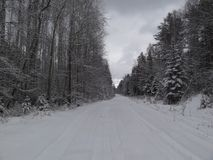 Zima las z śniegiem na Urals Obrazy Royalty Free