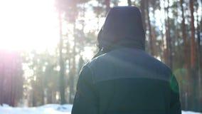 Zima lasu samiec zdjęcie wideo