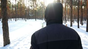 Zima lasu samiec zbiory