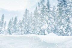 Zima lasu tło Zdjęcia Stock
