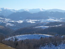 Zima lasu zapowiedź Fotografia Stock