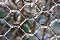 zima lodowej burzy Obraz Stock