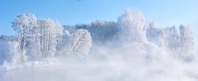Zima mgłowy wschód słońca Fotografia Royalty Free