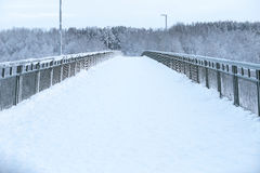 Zima na moscie Fotografia Royalty Free