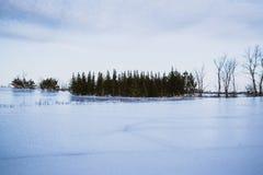 Zima na segreguję zdjęcia stock