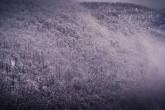 Zima nastrój Zdjęcie Royalty Free