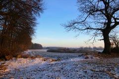 Zima nastrój przy wsią Obraz Royalty Free