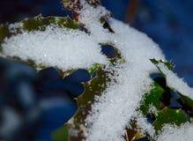 Zima śnieg Zdjęcia Royalty Free