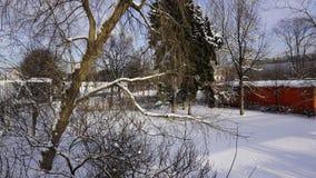 Zima śnieg w Gorky parku zdjęcie stock