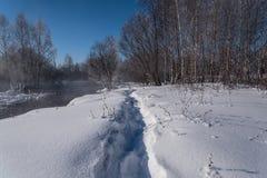 Zima śniegu lasowa rzeczna woda Fotografia Stock