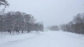 Zima obrazek zdjęcie wideo