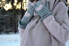 Zima odziewa Zima nastrój Zima styl Zdjęcia Royalty Free
