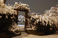 zima ogrodowa Zdjęcie Royalty Free