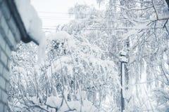 Zima opad śniegu w wiosce Śnieżny zawalenie się fotografia royalty free