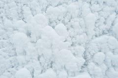 Zima oszrania tekstura Fotografia Royalty Free