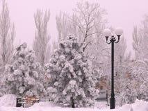 Zima park w Donetsk obrazy stock