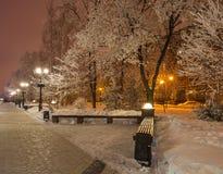 Zima park w wieczór zakrywającym z śniegiem Zdjęcie Stock