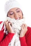 Zima piękno Zdjęcia Stock